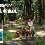 Le Point Double Spread I